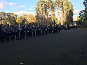 Woking District Scouts